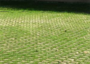 Drivable Grass Porous Pavement